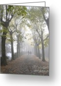 Tree-lined Greeting Cards - Tuscany Love Greeting Card by Rebecca Margraf