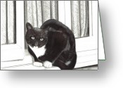 Tuxedo Mixed Media Greeting Cards - Tuxedo Cat Sitting In Window Greeting Card by Joshua Hullender