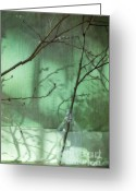 Beer Greeting Cards - Twigs Shadows And An Empty Beer Jug Greeting Card by Priska Wettstein