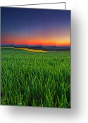 Twilight Photo Greeting Cards - Twilight Fields Greeting Card by Evgeni Dinev