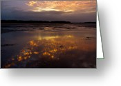 Twinkle Greeting Cards - Twinkle Reflections Greeting Card by Laurie Anne King