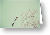 Migrating Bird Greeting Cards - Two Geese Migrating Greeting Card by Laura Ruth