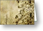 Winter Trees Greeting Cards - Two Generations Greeting Card by Bonnie Bruno