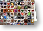 Grid Of Heart Photos Digital Art Greeting Cards - Two Hundred Series Greeting Card by Boy Sees Hearts