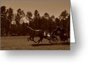 Carriage Team Greeting Cards - Two in Hand Greeting Card by Maria Schnell