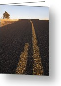 Yellow Line Greeting Cards - Two Lane Road Between Fields Greeting Card by Jetta Productions, Inc