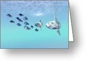 Sea Life Digital Art Greeting Cards - Two Large Sunfish Escort A School Greeting Card by Corey Ford