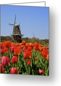 Windmill Mixed Media Greeting Cards - Two Lips Greeting Card by Robert Pearson