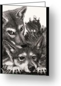 Wolves Drawings Greeting Cards - Two Little Lobos Greeting Card by Miki Krenelka