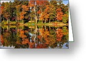 Marvelous Greeting Cards - Two of a Kind Greeting Card by Robert Harmon