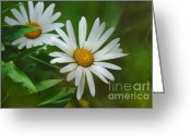 Present Card Greeting Cards - Two of Us. A Day for Daisies Greeting Card by Jenny Rainbow