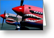 Curtiss Kittyhawk P-40 Greeting Cards - Two P-40 Tigers Teeth Greeting Card by BuffaloWorks Photography