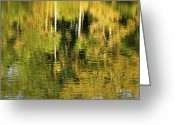 Reflected Tree Greeting Cards - Two Palms Reflected In Water Greeting Card by Rich Franco