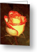 Cream Roses Greeting Cards - Two Toned Textured Rose Greeting Card by Cathie Tyler