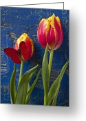  Color  Colorful Greeting Cards - Two tulips with red butterfly Greeting Card by Garry Gay