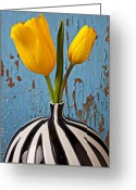 Striped Greeting Cards - Two Yellow Tulips Greeting Card by Garry Gay