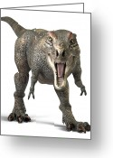 T Rex Greeting Cards - Tyrannosaurus Rex  Greeting Card by Roger Hall and Photo Researchers