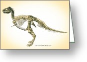 T Rex Greeting Cards - Tyrannosaurus Rex Skeleton Greeting Card by Bob Orsillo