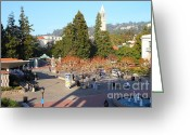 Cal Bear Greeting Cards - UC Berkeley . Sproul Hall . Sproul Plaza . Sather Gate and Sather Tower Campanile . 7D10016 Greeting Card by Wingsdomain Art and Photography