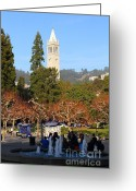 Cal Bear Greeting Cards - UC Berkeley . Sproul Plaza . Sather Gate . 7D9998 Greeting Card by Wingsdomain Art and Photography