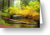 Fall River Scenes Painting Greeting Cards - Uc10-2 Greeting Card by Shasta Eone