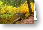 Fall River Scenes Painting Greeting Cards - Uc10-5 Greeting Card by Shasta Eone