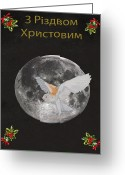 Lesvos Greeting Cards - Ukrainian Barn owl Merry Christmas Greeting Card by Eric Kempson