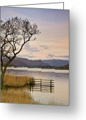 Fence Greeting Cards - Ullswater Fence Greeting Card by John Ormerod