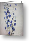 Common Greeting Cards - Ultramarine  Greeting Card by Priska Wettstein