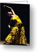 Intense Greeting Cards - Un momento intenso del flamenco Greeting Card by Richard Young