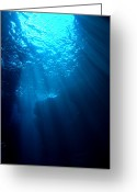 Undersea Greeting Cards - Underwater Sunlight Greeting Card by Takau99