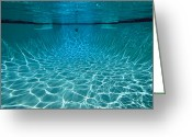 Property Released Photography Greeting Cards - Underwater View In A Swimming Pool Greeting Card by Tim Laman