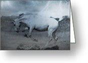 Petstagram Greeting Cards - Unicorn Edit Greeting Card by Rachel Williams