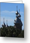 Minarets Greeting Cards - University of Tampa Minarets Greeting Card by Carol Groenen