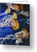Ocean Pyrography Greeting Cards - Untitled Greeting Card by John Scharle
