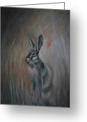 Hare Drawings Greeting Cards - Untitled  Greeting Card by Lynn Hughes