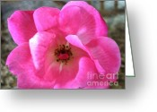 Digitalized Digital Art Greeting Cards - Up Close Rose Greeting Card by Marsha Heiken