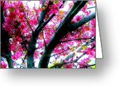 Pinkish Greeting Cards - Up In The Cherry Blossom Tree Greeting Card by Marsha Heiken