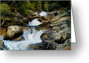 Yosemite Creek Greeting Cards - Up the Creek Greeting Card by Bill Gallagher