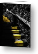 Stairs Greeting Cards - Up To Something Greeting Card by Amanda Vouglas