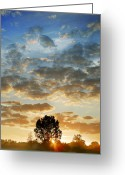Sunrise Greeting Cards - Up Up And Away Greeting Card by John Chivers