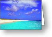 West Indies Greeting Cards - Upper Shoal Bay Greeting Card by Thomas R Fletcher