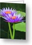 Violet Blue Digital Art Greeting Cards - Upright Lilies Greeting Card by Vijay Sharon Govender