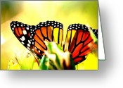 Monarchs Greeting Cards - Upside Down Greeting Card by Emily Stauring