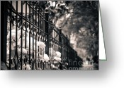 Life In The City Greeting Cards - Urban Beauty Greeting Card by Christina Klausen