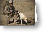 Yellow Dog Greeting Cards - U.s. Marine Provides Security Greeting Card by Stocktrek Images