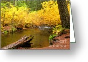 Fall River Scenes Painting Greeting Cards - Us10-3 Greeting Card by Shasta Eone