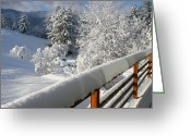 Bannister Tapestries Textiles Greeting Cards - Usa, Idaho, Coeurdalene, Winter Scenery Greeting Card by Kent & Charlene Krone