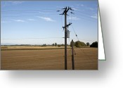 Horizontal Lines Greeting Cards - Utility Wires in Rural Area Greeting Card by David Buffington