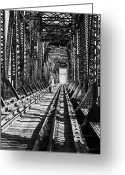 Drifter Greeting Cards - Vagrant on Bridge Greeting Card by Don Wolf